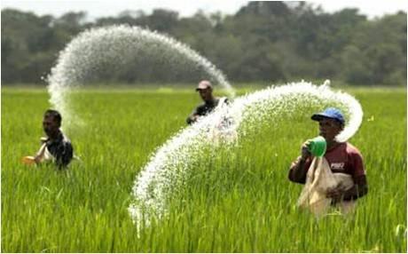 Agricultural Disinfectants - Global Market Outlook (2016-2022)