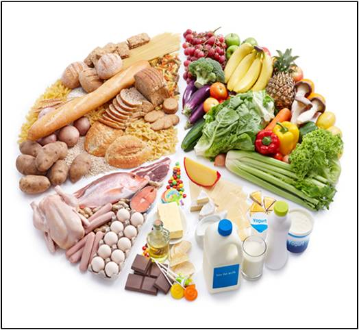 Animal Nutrition - Global Market Outlook (2015-2022)