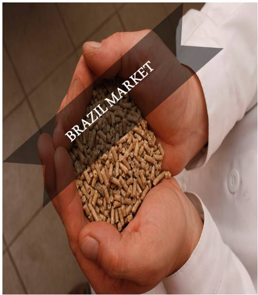 Brazil Compound Feed Market Outlook (2015-2022)