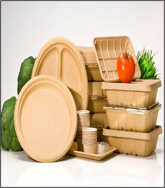 Biodegradable Packaging - Global Market Outlook (2015-2022)