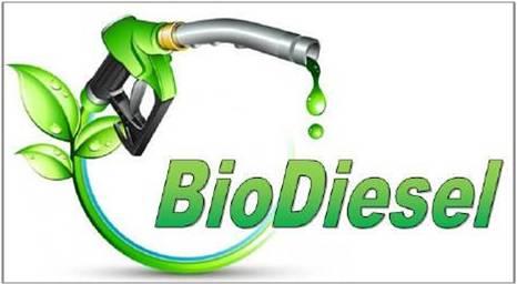 Biodiesel - Global Market Outlook (2016-2022)