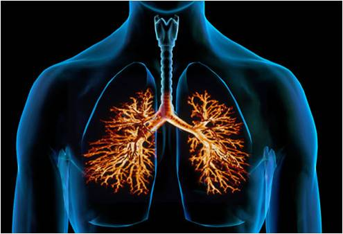 Bronchitis Treatment - Global Market Outlook (2015-2022)
