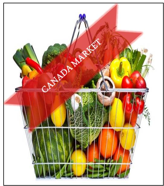 Canada Organic Foods and Beverages Market Outlook (2014-2022)