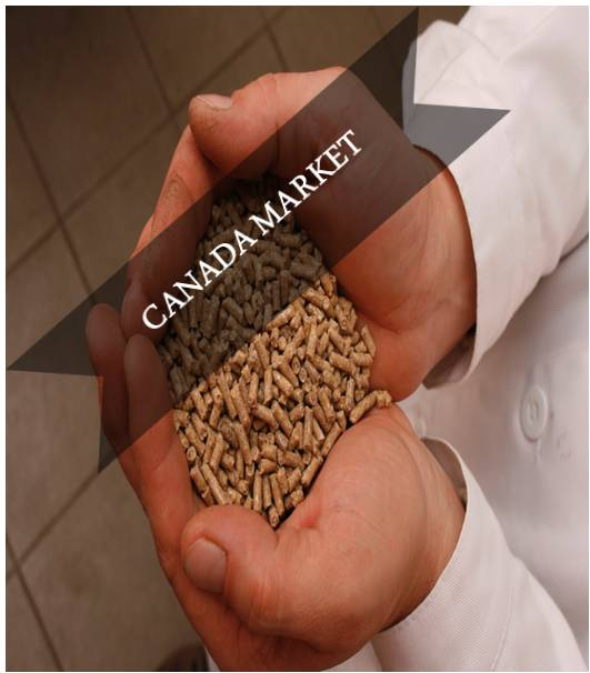 Canada Compound Feed Market Outlook (2015-2022)