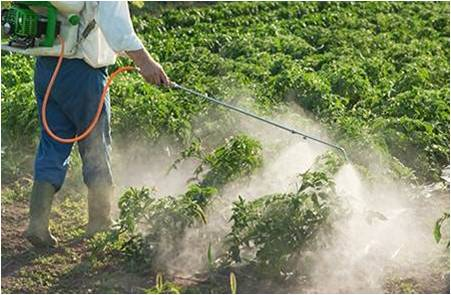 Crop Protection Chemicals - Global Market Outlook (2016-2022)