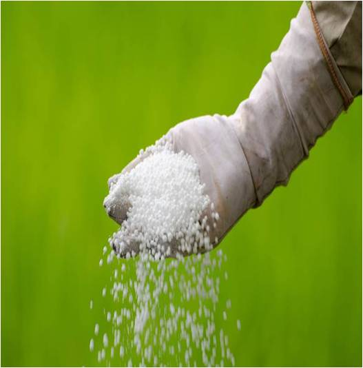 Fertilizers - Global Market Outlook (2015-2022)