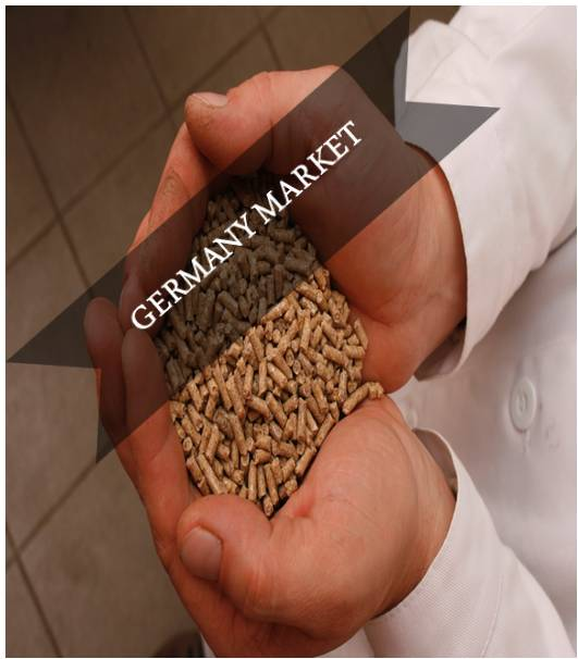 Germany Compound Feed Market Outlook (2015-2022)