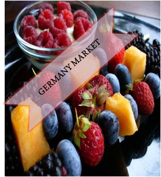 Germany Antioxidants  Market Outlook (2014-2022)