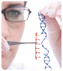 Genome Editing - Global Market Outlook (2016-2022)