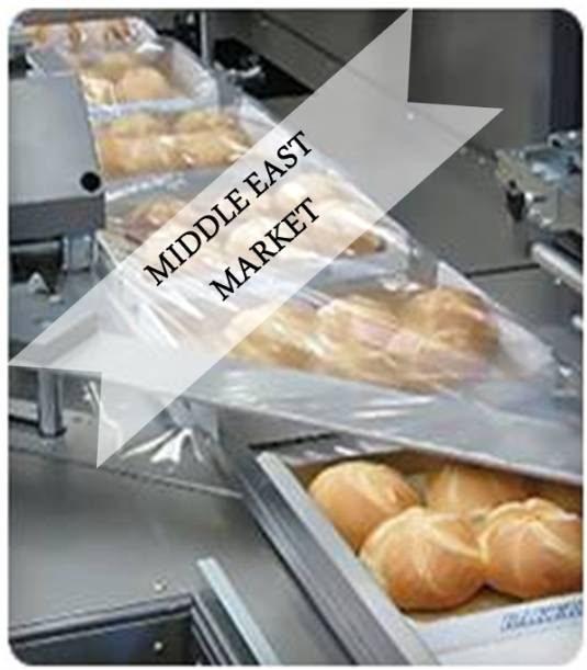 Middle East Food Processing and Packaging Equipment Market Outlook (2014-2022)