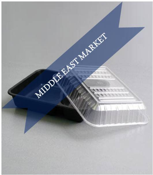 Middle East Plastic Packaging Market Outlook (2014-2022)