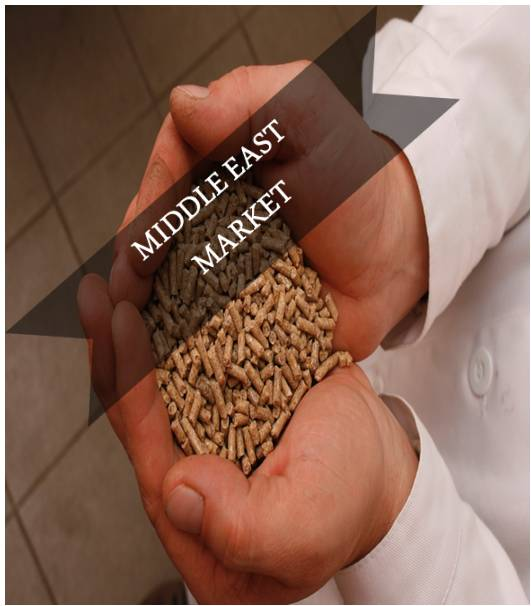 Middle East Compound Feed Market Outlook (2015-2022)