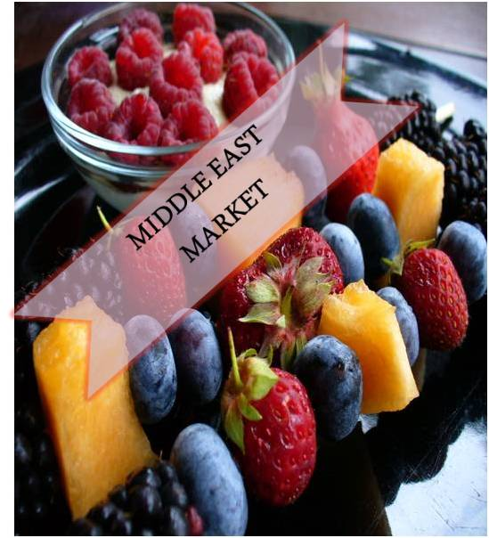 Middle East Antioxidants  Market Outlook (2014-2022)