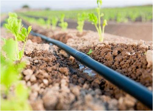 Micro Irrigation Systems - Global Market Outlook (2015-2022)