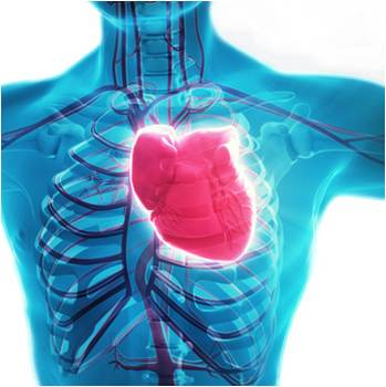 Myocardial Infarction Therapeutics - Global Market Outlook (2015-2022)