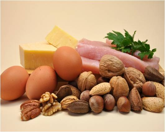 Protein Ingredients Global Market Outlook - Trends, Forecast, and Opportunity Assessment (2015-2022)