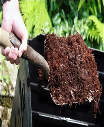Soil Conditioners - Global Market Outlook (2017-2026)