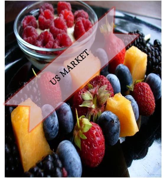 US Antioxidants  Market Outlook (2014-2022)
