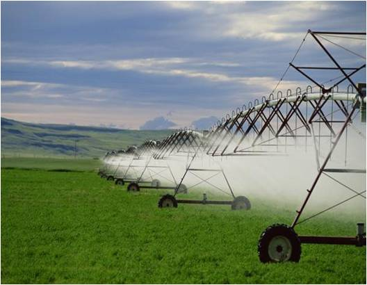 Global Agribusiness Market Outlook (2015-2022)