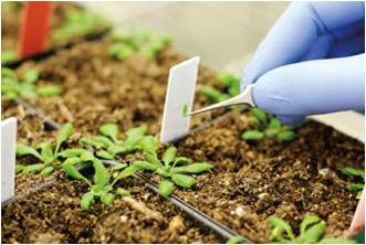 Global Agricultural and Environmental Diagnostics  Market Outlook (2014-2022)
