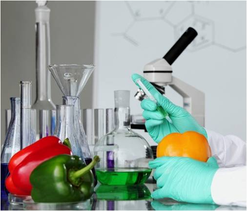 Global Food Safety Testing Market Outlook (2014-2022)