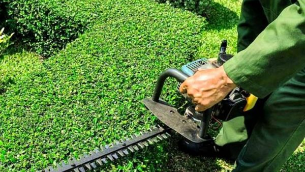 Landscaping and Gardening Services - Global Market Outlook (2017-2026)