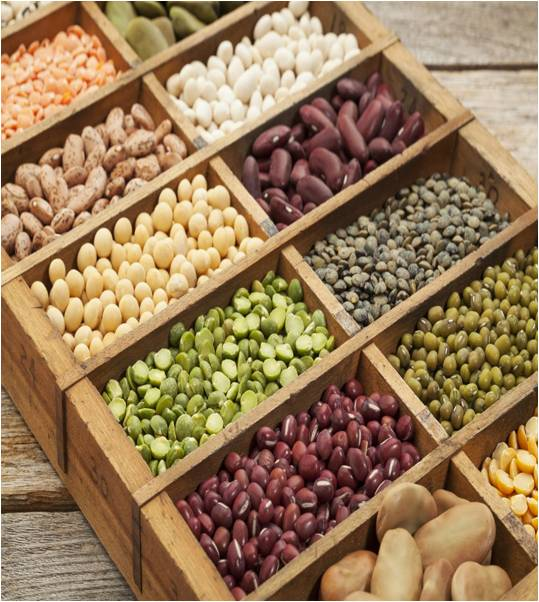 Global Seeds Market Outlook (2014-2022)