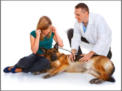Global Veterinary Diagnostics Market Outlook (2014-2022)